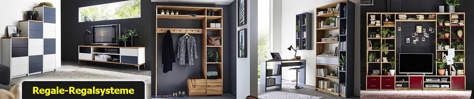 Regal Standregal Bücherregal Raumteiler aus Massivholz